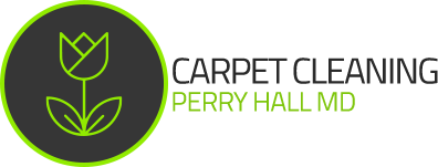 Carpet Cleaning Perry Hall MD